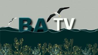 La Datavision, une web TV pour la filière algue en Bretagne