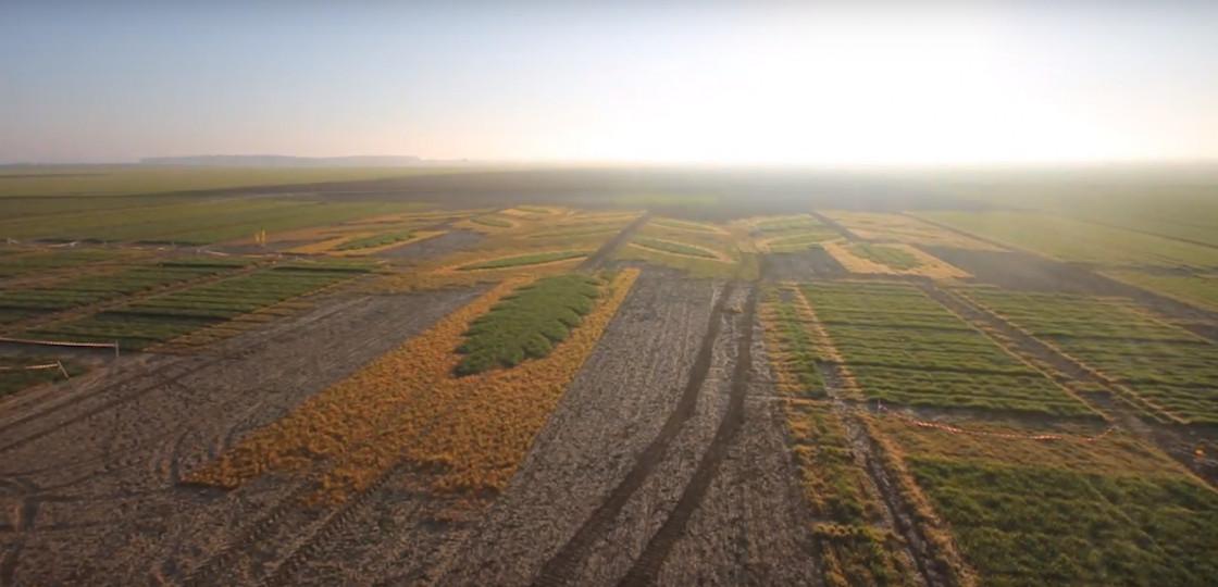 La communication vidéo : valoriser l'Agriculture et l'Agrofourniture