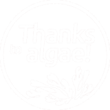 thanks to algae