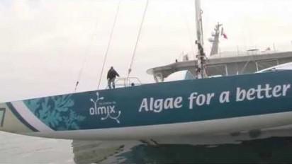 Le retour du trimaran Olmix sur La Route du Rhum en vidéo