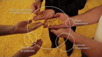 Présentation vidéo de la solution Easy Maïs de Syngenta