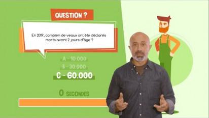 Vidéo Quiz