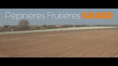 Vidéo Corporate Pépinières Grard, semences et plants pour les fruits et légumes